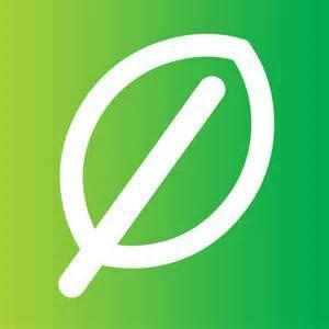 Review of Springleaf Financial Personal Loan Program